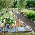 Avenue-Cemetery-Levin (3)