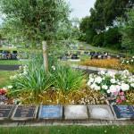 Avenue-Cemetery-Levin (5)