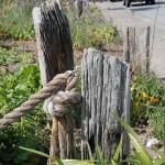 Road frontage garden