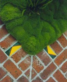 Pocket-Handkerchief-Garden (1)