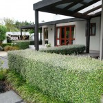 Rural-Waikanae (3)