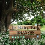 Shannon Park (2)