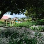 Shannon Park (4)