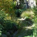 Waikuku-Woodland-Garden (10)