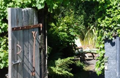 Waikuku-Woodland-Garden (11)