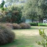 Waikuku-Woodland-Garden (25)