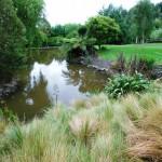 Waikanae-Woodland-Drive