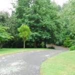 Waikanae-Woodland-Drive (6)