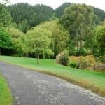 Waikanae-Woodland-Drive (7)
